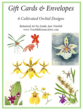 Gift cards by Vorobik: Cultivated Orchids