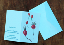 Rose hip gift card sample