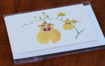 sample cultivated orchid gift card